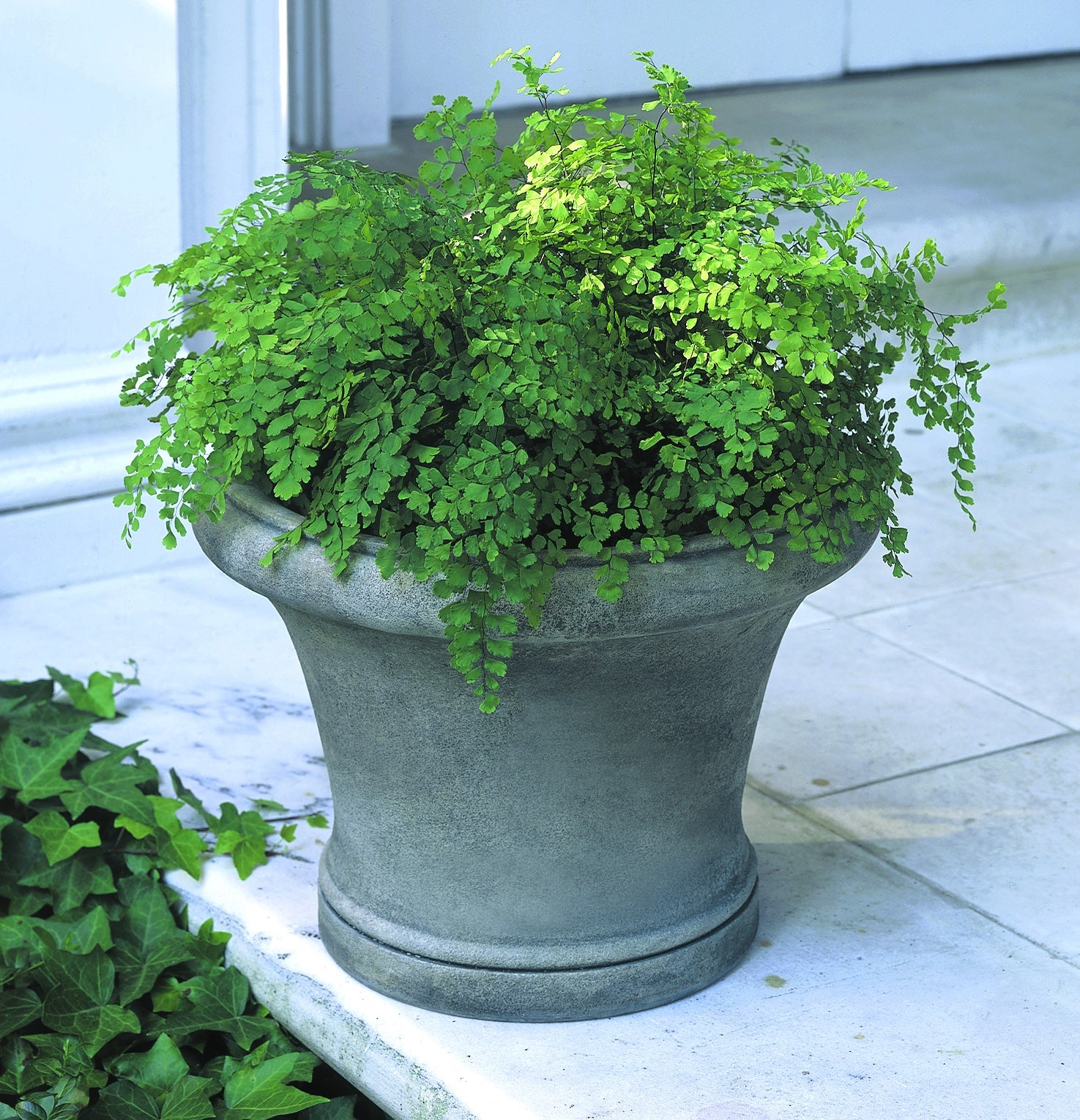 Campania International Westport Planter