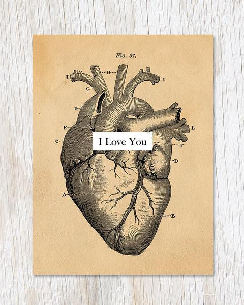 Anatomical Heart I Love You Card