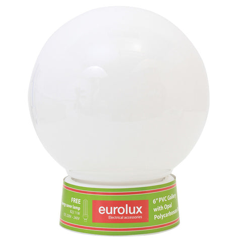 Budget Light with Energy Saving Globe