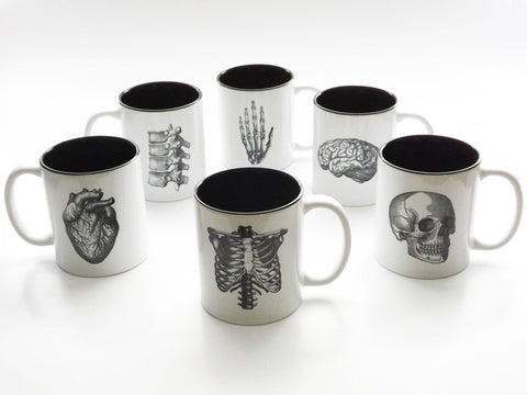 Anatomy Theme Coffee MUGS Set of Six medical home decor goth kitchen gift-Art Altered