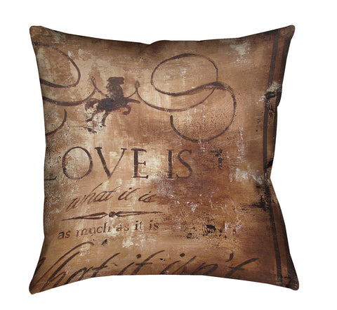 """Emotional Dichotmy"" Outdoor Throw Pillow"