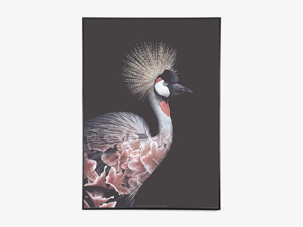 Crowned Crane Flower Portrait fra What We Do