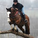 Testimonial Cass Riggs - Eventer and Owner of South Farm Equest