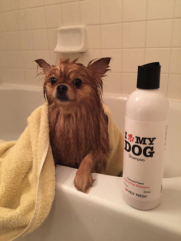 Natural Dog Shampoo Oatmeal & Neem - Lovely Fresh - 8