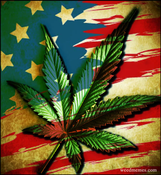 America's Most Patriotic Crop: Cannabis, Hemp