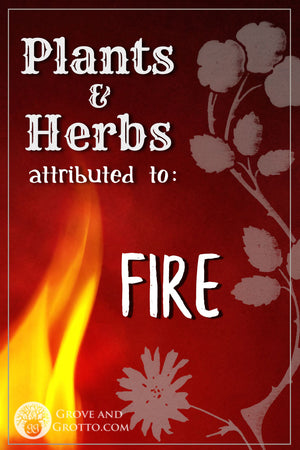 What plants and herbs are attributed to Fire?