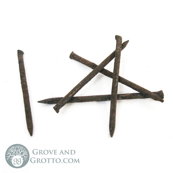 Coffin Nails (Set of 5) - Grove and Grotto