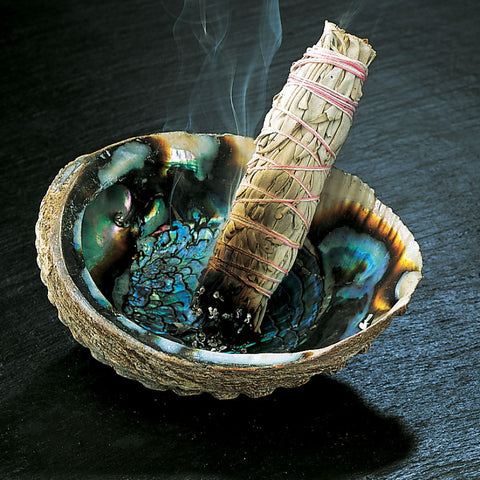 Abalone Shell Smudge Bowl
