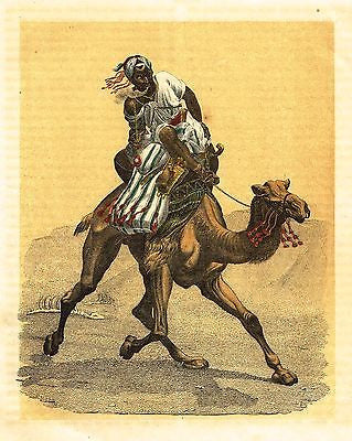 """CAMEL RACING IN THE DESSERT"" - Chromolithograph - c1880 - Sandtique-Rare-Prints and Maps"