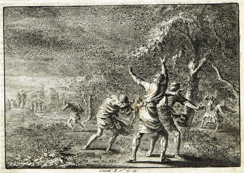 "Luyken Bible Print - ""PLAGUES OF EGYPT - LOCUSTS - EXODUS X"" - Copper Engraving - 1700"
