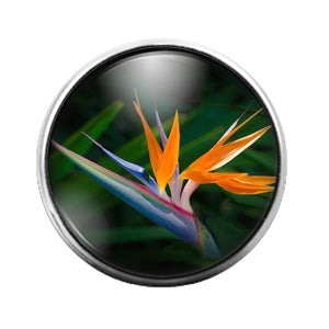 Bird of Paradise Flower - 18MM Glass Dome Candy Snap Charm GD0927