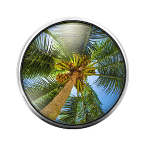 Palm Tree - 18MM Glass Dome Candy Snap Charm GD1393