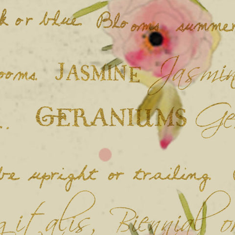 ***WHTSRG8 - Tea Stained Rose Garden Paper  8 1/2 x 11