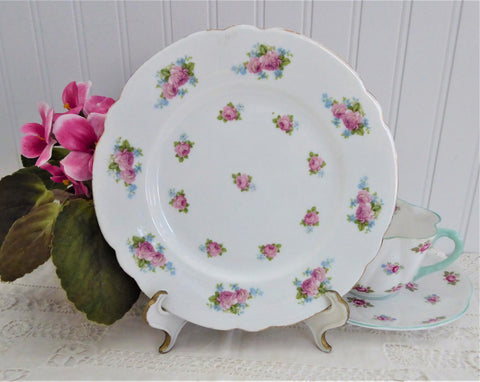 Shelley Salad Plate Dessert Roses Forget-Me-Nots Gainsborough 7 Inches In Diameter