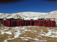 Donations - Laphag Nunnery in Tibet
