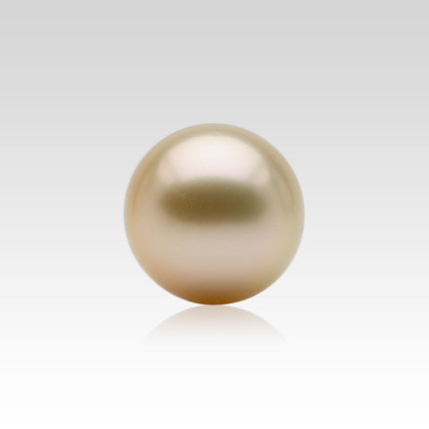 15.5-16mm Loose Golden South Sea Pearls