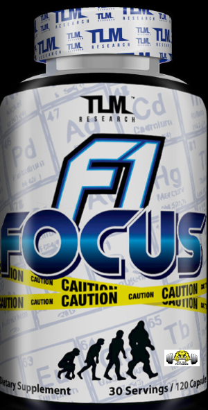 F1 Focus by TLM Research
