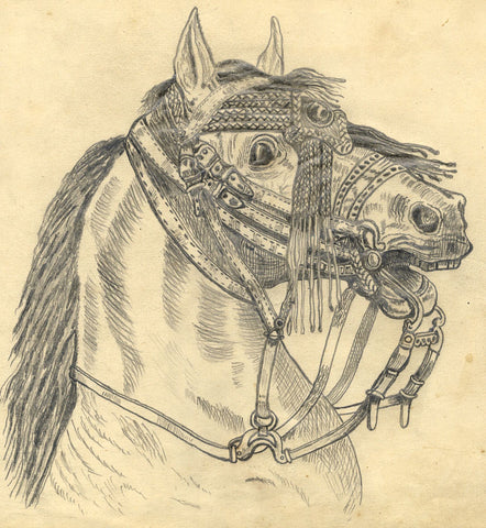 J.E. Jeffreys, Horse in Exotic Harness  - Late 19th-century graphite drawing