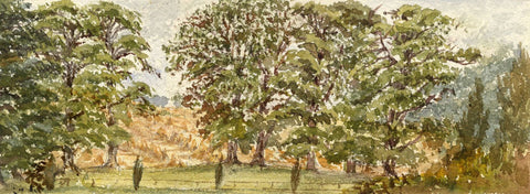 Emily Bruce, Elm Trees from Manton Grange, Marlborough - 1886 watercolour
