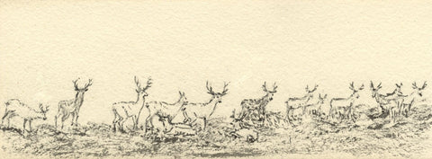 Emily Bruce, Deers at Savernake Park, Marlborough - 1886 watercolour painting