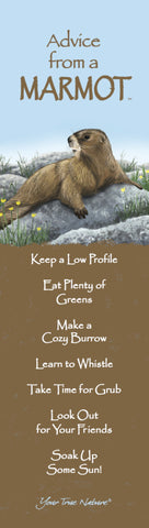 Advice from a Marmot Laminated Bookmark