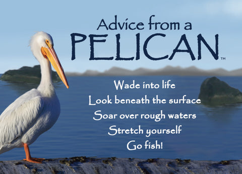 Advice from a Pelican Jumbo Magnet