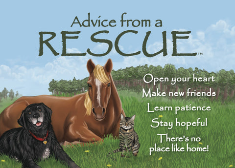 Advice from a Rescue Jumbo Magnet