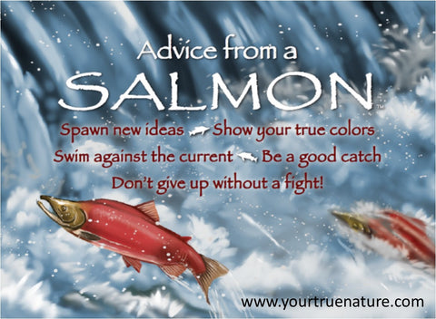 Advice from a Salmon Jumbo Magnet