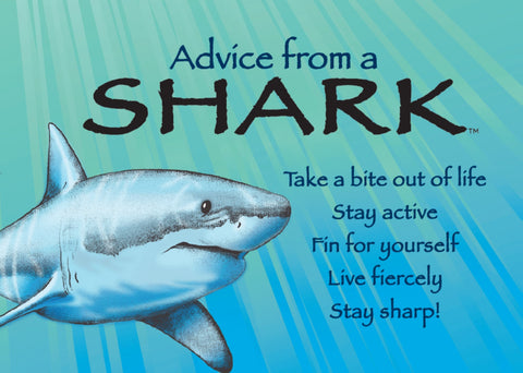 Advice from a Shark Jumbo Magnet