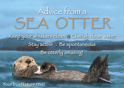 Advice from a Sea Otter Jumbo Magnet