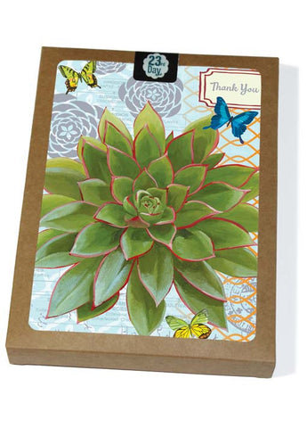 Echeveria Blue Boxed Cards