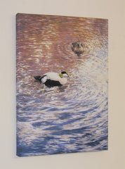 """Eider Ducks"" Block Canvas Print"