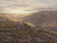 Creag nan Gabhar Red Deer Stag Picture
