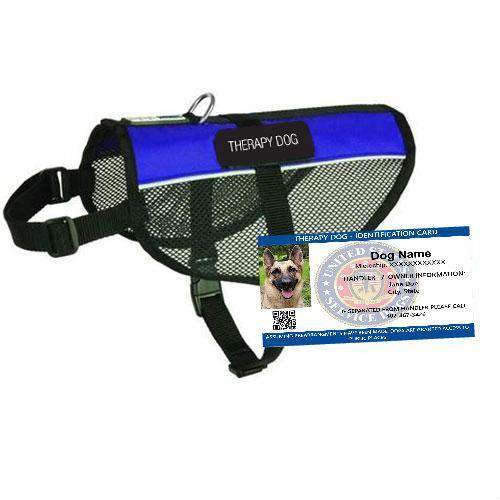 Therapy Dog Mesh Vest Starter Kit