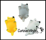 Small Mochi Squishy Animals - Kawaii -  Sensory, Stress, Fidget Party Favor Toys
