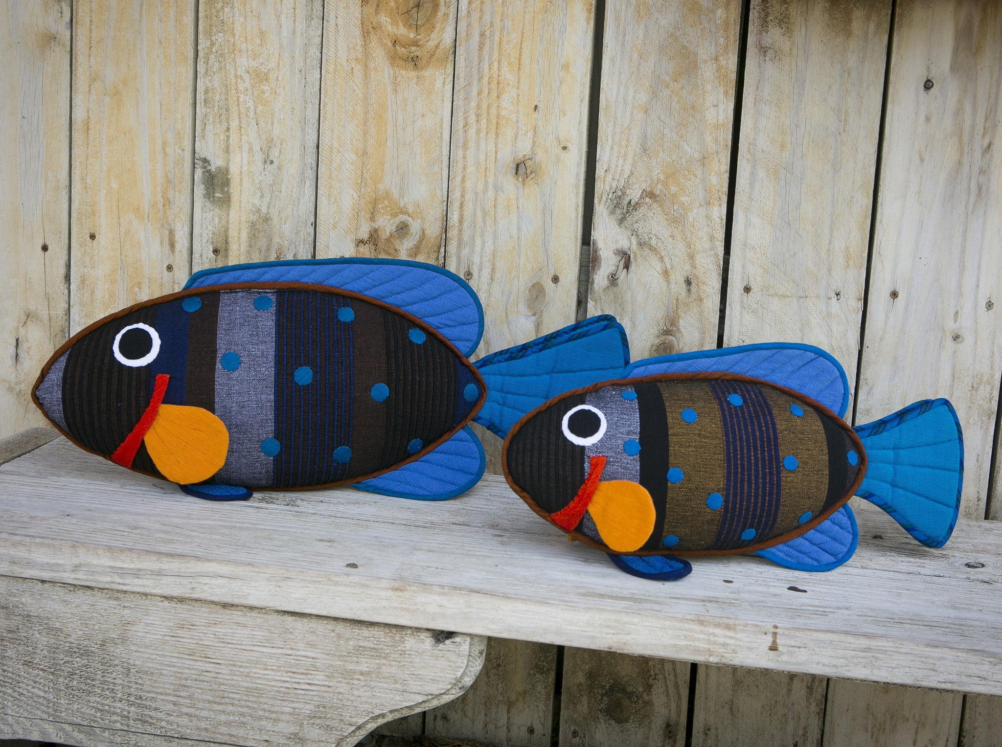Willy, the Peacock Rock Cod – Relaxing on the bench! (small & large sizes)