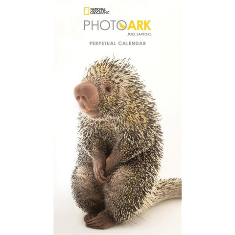 9781772183078 Photo Ark Birthday 2019 Slim Perpetual Calendar Zebra Publishing - Calendar Club1