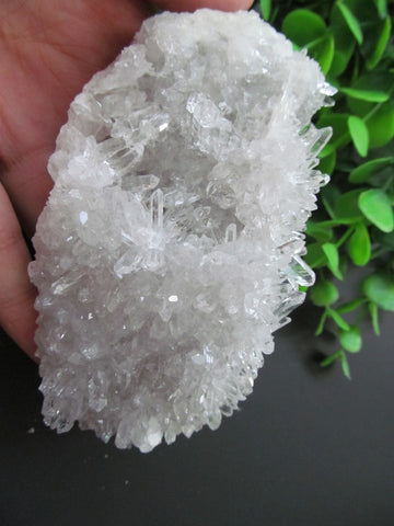 Quartz Flowers Crystal Clusters 418g