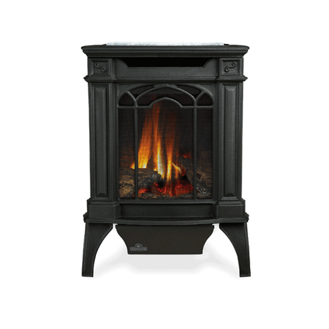 GDS20 Arlington Direct Vent Gas Stove