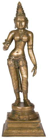 Sivagami (Chola Style)