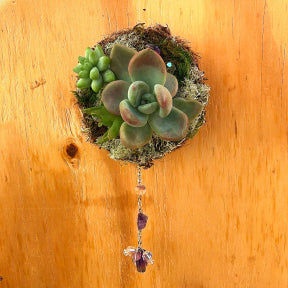 "Amethyst Floating Succulent Wreath 3""W x 6""L"