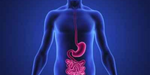 How to Tell That Your Gut Bacteria are Out of Whack? Here Are 7 Signs to Watch For & How to Fix It
