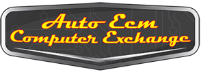 Auto ECM Computer Exchange
