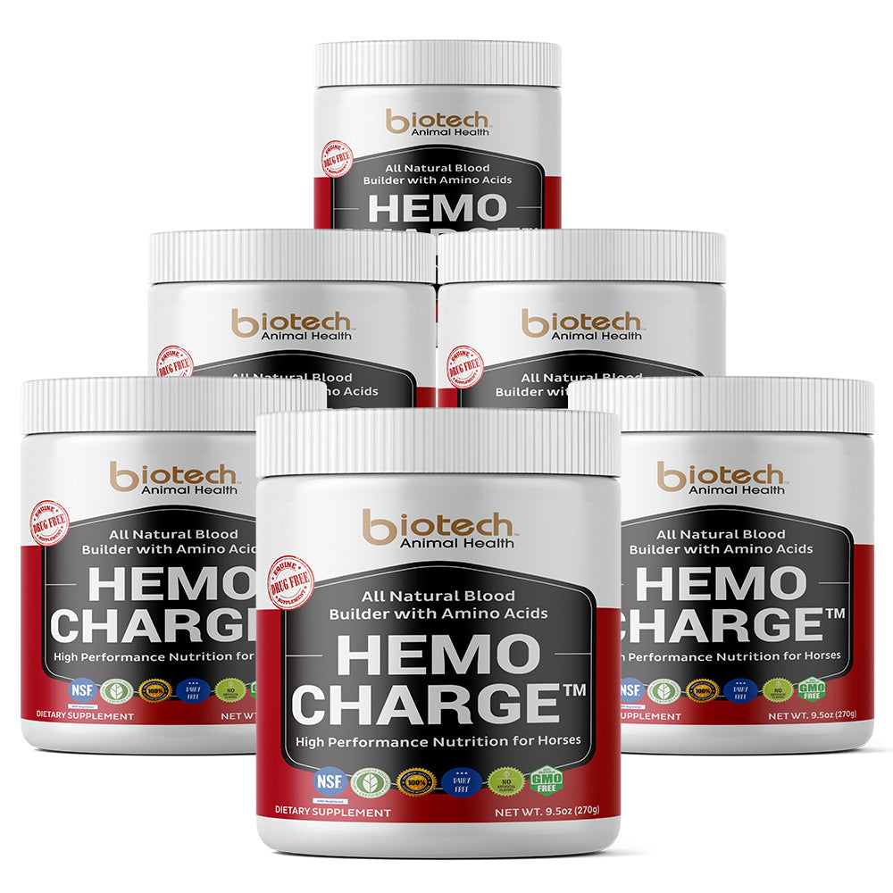 6 Jars Hemo Charge™ - SAVE $180.00!