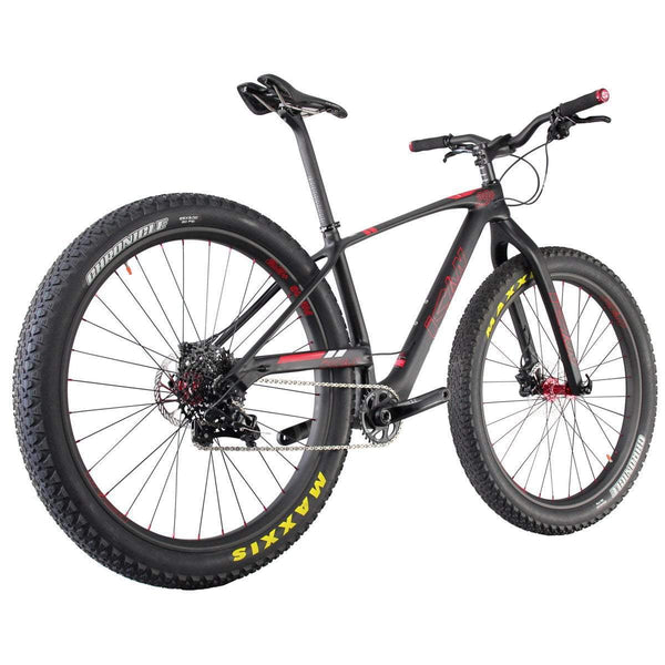 ICAN Bicycles 17 inch 29+ Carbon Mountain Bike