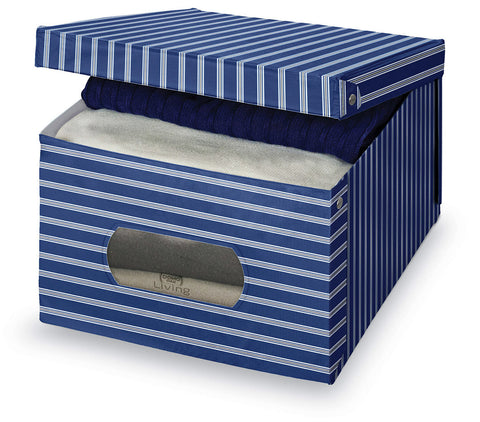 DomoPak Large Garment Box Plain Blue