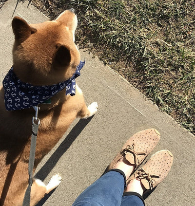 lunar mid taupe sneaker on foot with dog