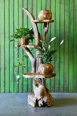 Harini Driftwood Stand with 3 Teak Shelves