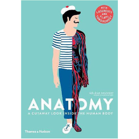 Anatomy: A Cutaway Look Inside the Human Body by Hélène Druvert & Jean-Claude Druvert - Junior Edition
