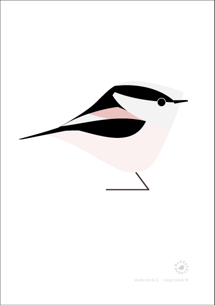 Long Tailed Tit. Studio Birds | series 2.